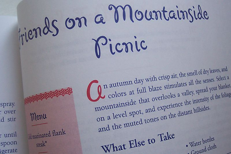 Picnic book