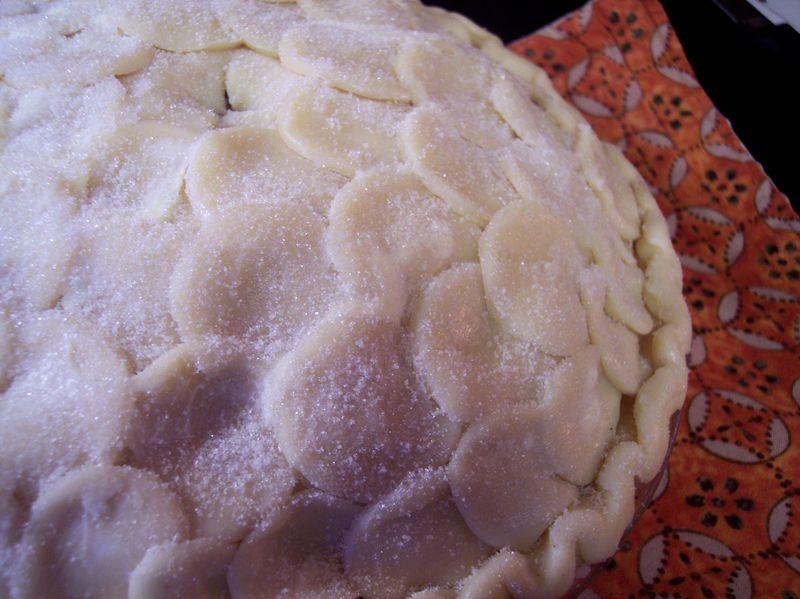 Vesica Pie-scis