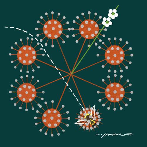 Pollinatingflower