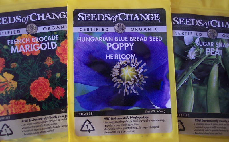 Blue_poppy_seeds