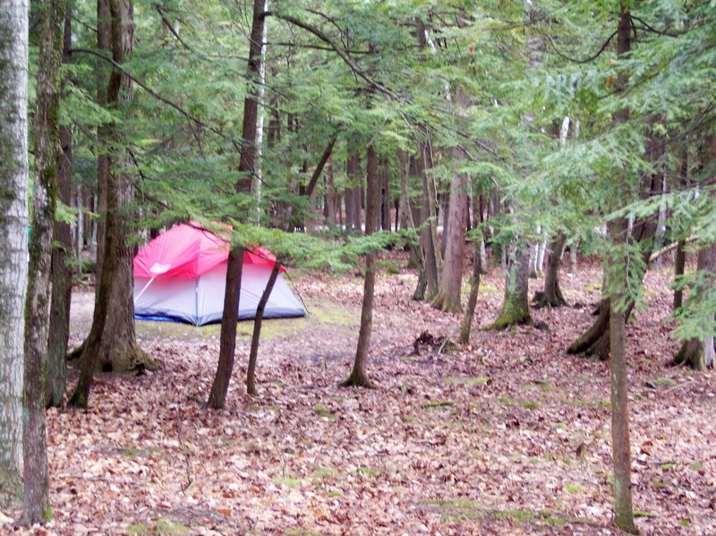 Tent_in_the_woods